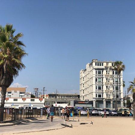 Bilde fra Air Venice On the Beach