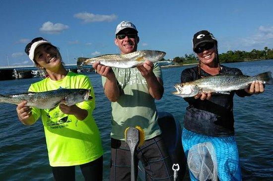 Carta de Pesca Terrestre de Miami