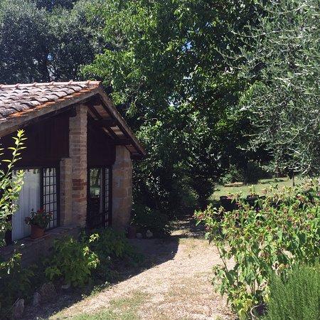 Civitella d'Agliano, Italien: photo2.jpg