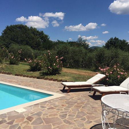 Civitella d'Agliano, Италия: photo3.jpg