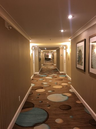同一海洋温泉度假酒店照片