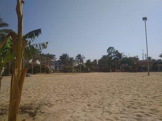 海鸥海滩度假酒店照片