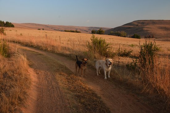 Lydenburg, South Africa: A new day awaits