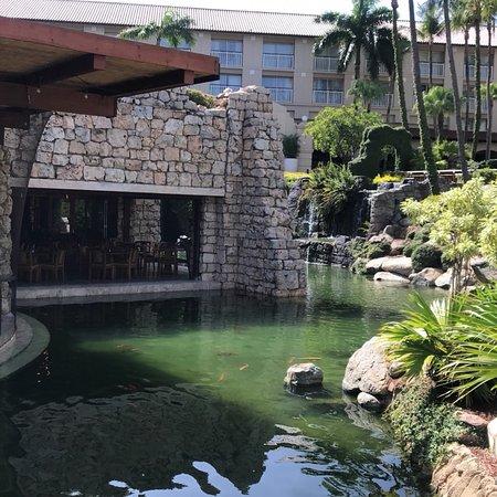 阿鲁巴岛君悦酒店赌场照片