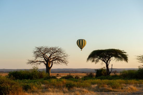 Ruaha National Park, Tanzania: getlstd_property_photo