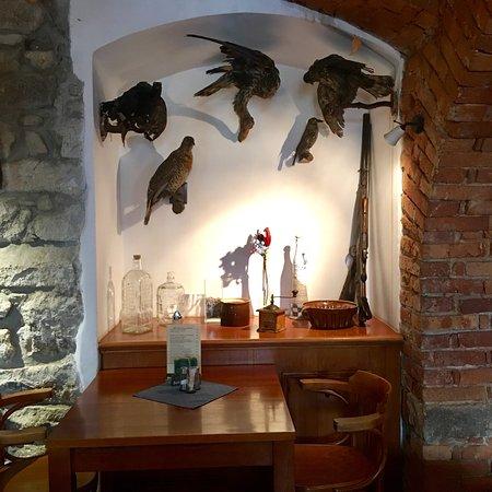 Foto de Penzion a restaurace Lesovna Žofín