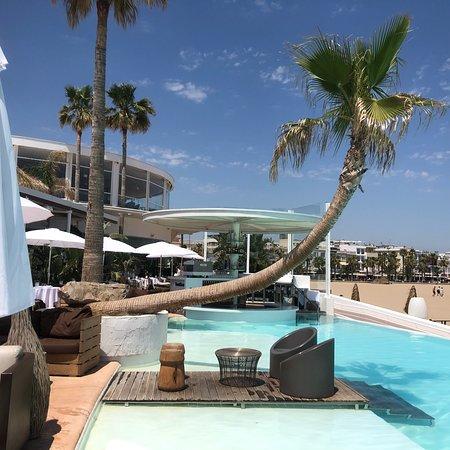 Marina Restaurant照片