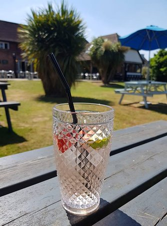 Totton, UK: sunny garden