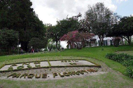 Parque Florestal de Amarante