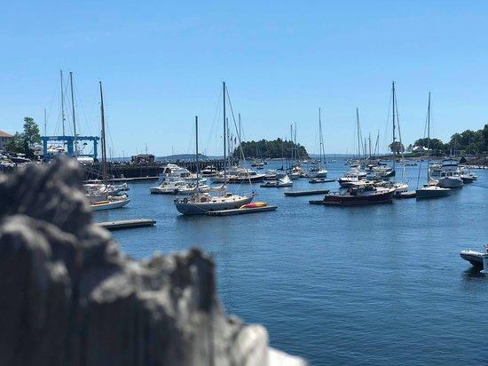 Schooner Surprise: Harbor view pre sail