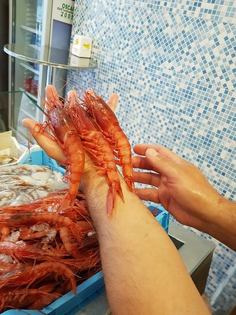 La bottega del pesce
