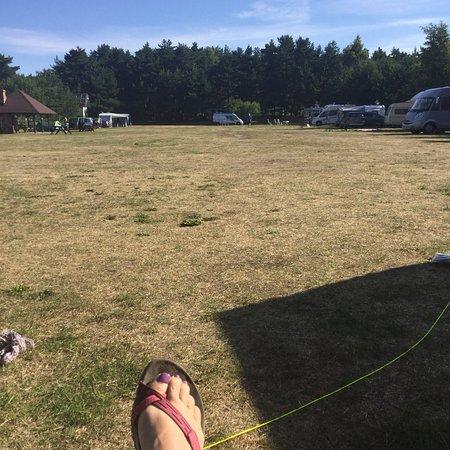 Kempings Verbelnieki: Ruime camping met plaatsen onder bomen, op gras. Op loopafstand tot het strand en duinen , waar
