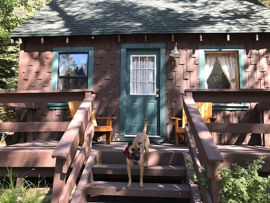 Tamarack Lodge and Resort: My puppy loved this place!