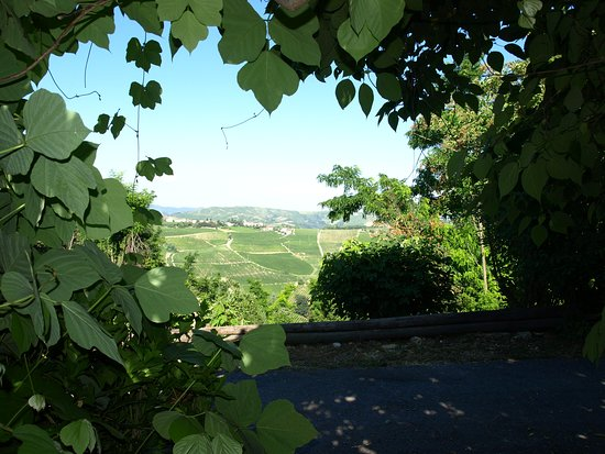 Montecalvo Versiggia, Italien: View of the hills from the terrace