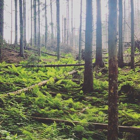 Tatras National Park照片