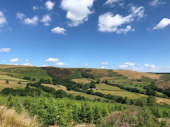 Llanwrtyd Wells, UK: Above the blue biking trail