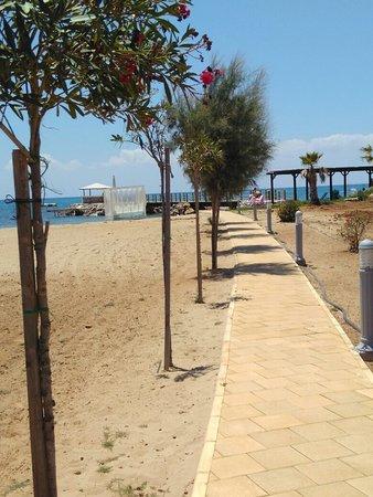 Bogaz, Chipre: IMG_20180701_123752_large.jpg