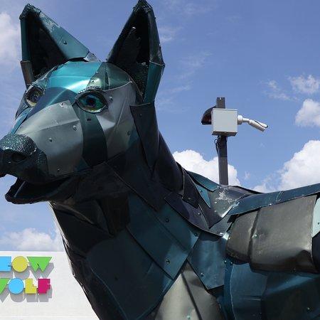 Meow Wolf照片
