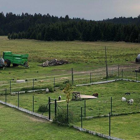 Cesky Rudolec, Republika Czeska: photo6.jpg