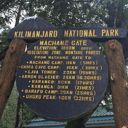 Linda vista do Kilimanjaro