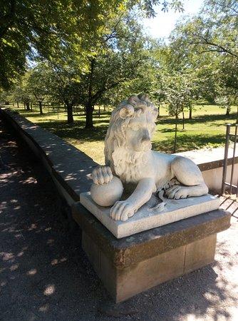 Schwetzingen Palace照片