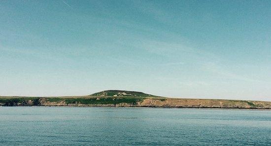 Ramsey Island Boat Trips -Thousand Islands Expeditions: Ramsey Island