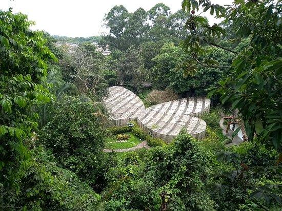 Jardin Botanico del Quindio照片