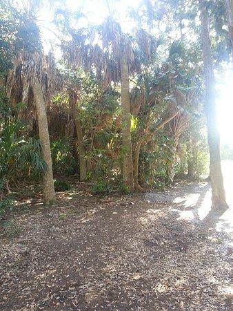 Joan M. Durante Community Park: Wild Gulf Coast Florida