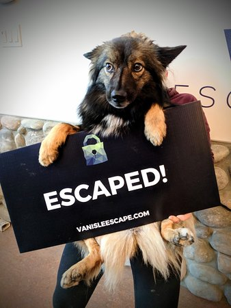 VanIsle Escape & Games