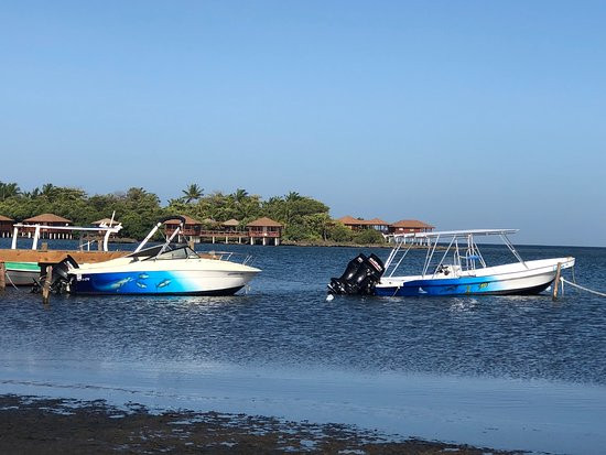"Sandy Bay, Гондурас: Roatan Dreamcatchers boats ""Golden Boyz"" and ""Larimar"""