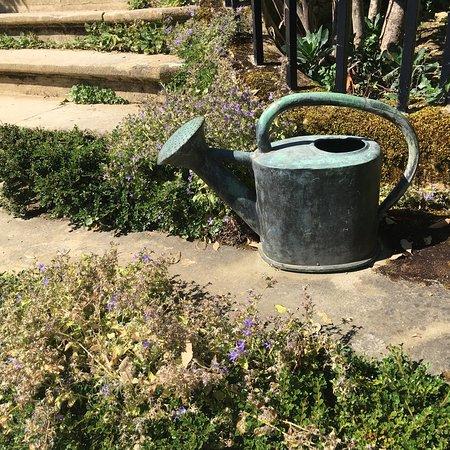 希德蔻特花园照片
