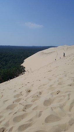 皮拉大沙丘照片