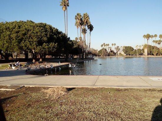 Lawndale, CA: Vista del pequeño lago de Alondra Park