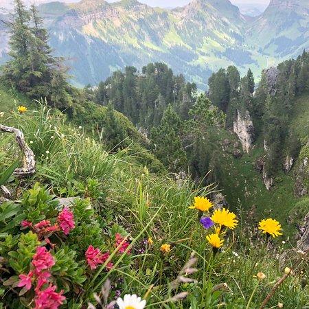 Beatenberg, Switzerland: photo0.jpg
