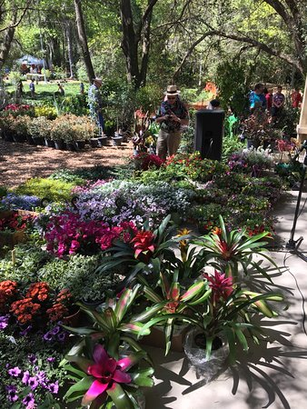 Kanapaha Botanical Gardens: FNGLA Plant Auction at Spring Garden Festival