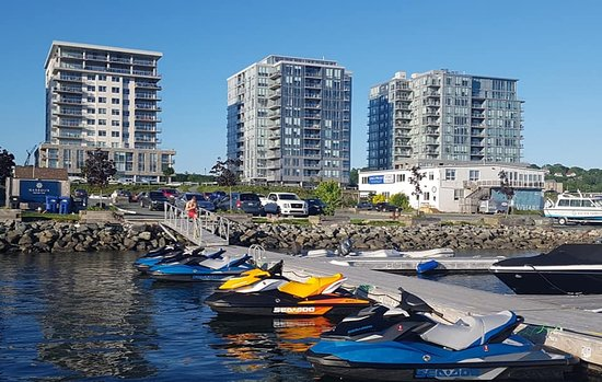 The Harbour Watercraft & Adventure Rentals