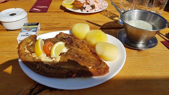 Fur Faergekro: Ikke det bedste billede, men fisken er stor.