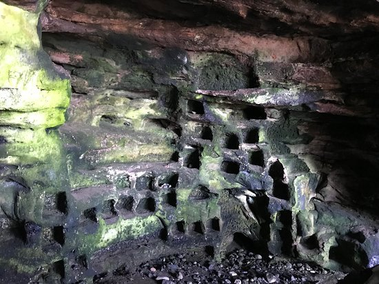 Wemyss Caves: The dovecote in the cave