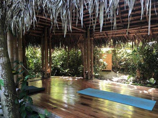 Yoga Hut Picture Of Rio Muchacho Organic Farm Canoa Tripadvisor