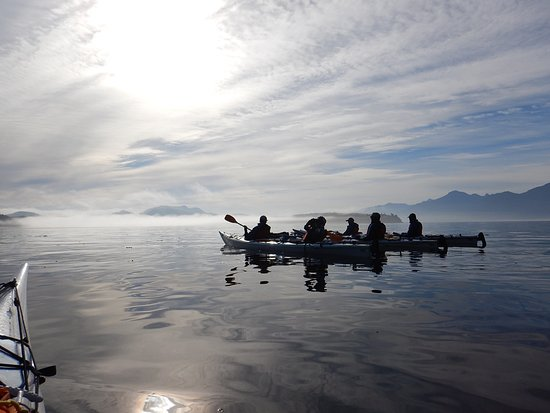 North Island Kayak: early morning departure into the mist