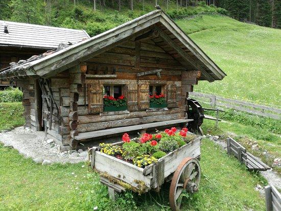 Gschnitz, Austria: IMG-20180609-WA0044_large.jpg