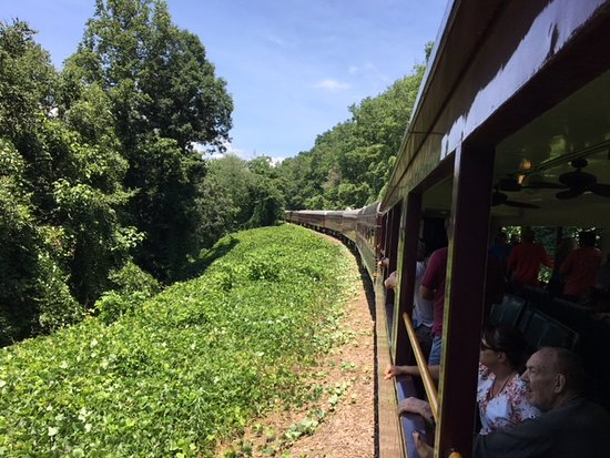 Great Smoky Mountains Railroad: Enjoy a cold beer on board!