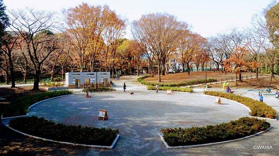 Kibooka Park