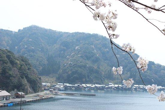Michi-no-Eki Funaya no Sato Ine Photo