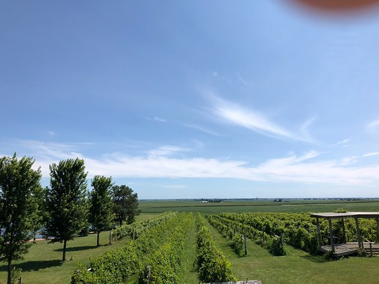 Mackinaw, إلينوي: View from the covered porch