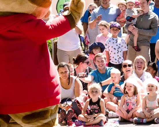 Character shows and meet and greets were a hit picture of story story land character shows and meet and greets were a hit m4hsunfo