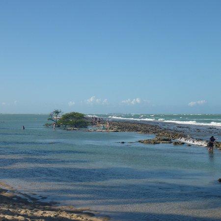 Pontal dos Carneiros照片