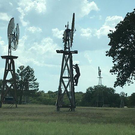 Tolar, TX: photo1.jpg