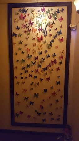 HELLO Massage: Butterfly Wall Decorations