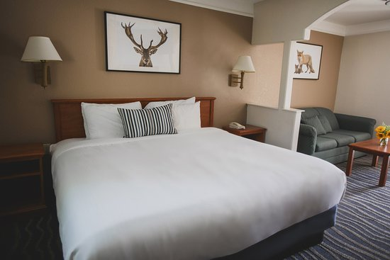 Inn at Mount Shasta: King Room with sitting area